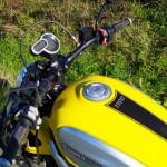 Logo del gruppo di Ducati Riders Roma e Litorale